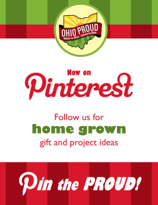 op-pinterest-follow-poster